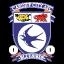 Cardiff City Afc 64
